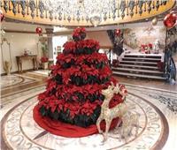 بـ120 باخرة نيلية و«البالون الطائر».. الأقصر تتزين لاستقبال السياح احتفالا برأس السنة