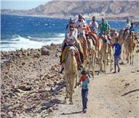 جمعية مسافرون: 2020 سيكون عام السياحة المصرية