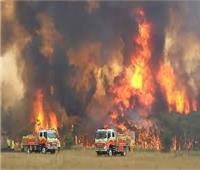"""سلطات ولاية """"نيو ساوث ويلز"""" الاسترالية تعلن حالة الطواريء جراء الحرائق"""