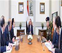 الرئيس السيسي يبحث إجراءات مكافحة الإرهاب وتأمين الحدود وتطورات سد النهضة
