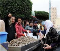 بالصور|أسماك غليون بـ22 منفذا في الإسكندرية.. والجمبري بـ90 جنيها