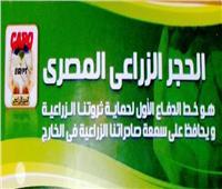 «الحجر الزراعي»: فتح 17 سوقا خارجيا أمام الحاصلات الزراعية المصرية