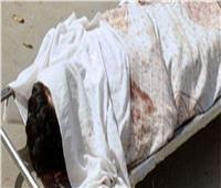 مقتل سائق  فى ظروف غامضة بابو حمص بالبحيرة