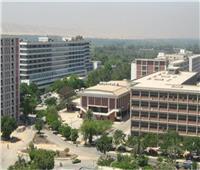 مليوني حالة «علاج وجراحة» خلال العام الماضي بجامعة أسيوط
