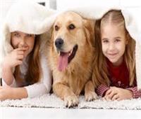 تربية الحيوانات.. هذه مميزاتها وأضرارها على الأطفال