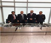 جمارك مطار القاهرة تضبط كمية من الشعر الطبيعي المستعار