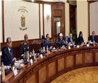 الحكومة: تأسيس شركة البورصة المصرية للسلع