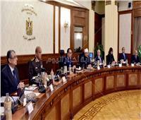 الحكومة: تأسيس شركة مساهمة بأسم «مصر الرقمية للاستثمار»