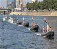 ضبط 146 طائرا و حيوانا بريا مهددين بالإنقراض في الإسكندرية