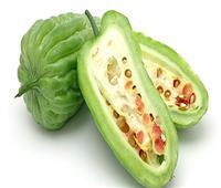 دراسة: مستخلصات «البطيخ المر» تحارب السرطان