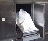 بسبب الميراث.. «نجار» يقتل شقيقه بمعاونة نجليه بسوهاج