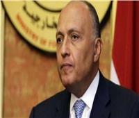 فيديو| وزير الخارجية: مصر تحرص دائما على حماية مصالحها المائية