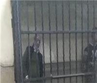 تأجيل محاكمة شقيق بطرس غالي بتهمة الاتجار في الآثار للغد