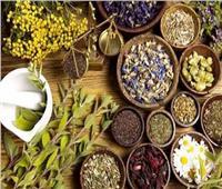 «بحوث الاقتصاد الزراعي» ينظم ورشة حول تطوير سلسلة القيمة للنباتات الطبية والعطرية