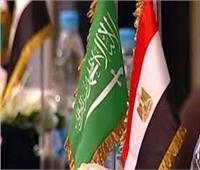 اليوم.. وفد تجاري مصري يبدأ لقاءات في السعودية