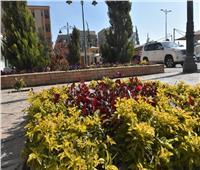 «الإسكان»: الانتهاء من تركيب الباكيات المعدنية بكوبري المشاه الثاني بشارع التسعين الجنوبي