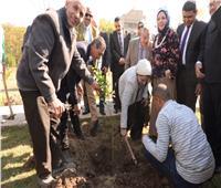 «هنجملها» لغرس الأشجار المثمرة مبادرة بجامعة أسيوط.. صور