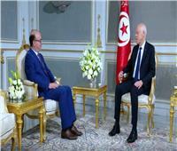الرئيس التونسي قيس سعيد يكلف إلياس الفخفاخ بتشكيل حكومة جديدة