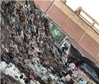 صور| أهالي عزبة منصور بالقليوبية:«ارحمونا من أكوام القمامة.. بتسبب لنا الأمراض»