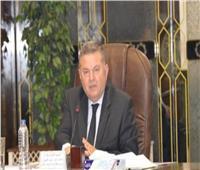 وزير قطاع الأعمال يكشف خطة فتح مناشئ جديدة للقطن