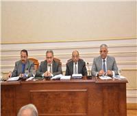 شعراوي: يحق لنائب المحافظ العودة لوظيفته بعد انتهاء مدة شغل منصبه