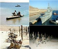 فيديو  استمرار فعاليات التدريب المصري السعودي البحري «مرجان- 16»