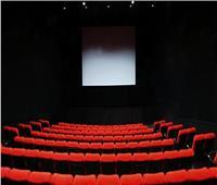 رقم قياسي لعائدات دور السينما في اليابان خلال 2019