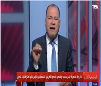 """«الديهي»: بيان الخارجية المصرية حول """"خطة السلام"""" غير قابل للمزايدة"""