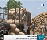فيديو  برنامج الغذاء العالمي يعلن فقدان السودان مليار دولار لهذا السبب