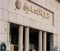 مجلس الدولة ينظر دعاوى وقف انتخابات «المحامين» الأحد المقبل