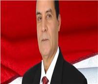 فيديو| الشهاوي: فلسطين قضية مصر الأولى