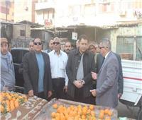 نائب محافظ القاهرة يتفقد المشروعات التنموية بحدائق القبة