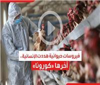 فيديوجراف| فيروسات حيوانية هددت الإنسانية.. آخرها «كورونا»