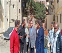 نائب محافظ القاهرة يتفقد أعمال تطوير شجرة مريم في المطرية