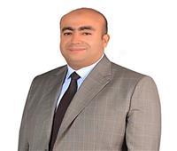 إسلام عوض: مصر لن تتخلى عن دورها في القارة الأفريقية