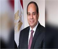 السيسي: مصر حرصت على تعزيز السلم والأمن في أفريقيا
