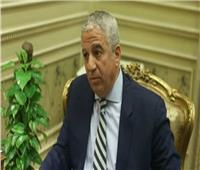 «خارجية النواب» و«المشاط» يبحثان حاضر ومستقبل التعاون الدولي