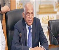 «عبد العال» يبدي تحفظات على تعديلات قانون الكيانات الإرهابية