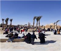 محمية وادي الريان تستقبل ٥٤ ألف زائر خلال عطلة نصف العام