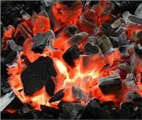منغوليا تعلق تصدير الفحم للصين حتى 2 مارس المقبل بسبب كورونا