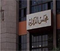 مجازاة ٣ مسئولين بالإسماعيلية لتكليف «فني تشجير» برئاسة إدارة