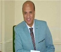 «الزناتي» أمينا لصندوق «الصحفيين» خلفا لهشام يونس