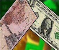 في أقل من ساعة.. الدولار يتراجع للمرة الثانية أمام الجنيه المصري بالبنوك