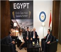 وزير البترول يعقد اجتماعا مع ممثلي شركة وايلد ويل العالمية للآبار