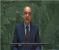 مصر تطالب بتنفيذ الموقف الأفريقي في إصلاح وتوسيع مجلس الأمن