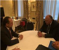 وزير الخارجية يلتقي نظيره النمساوي
