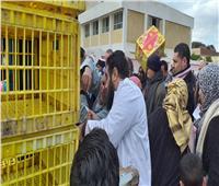 توزيع عدد 1700 بطة لعدد 85 مستفيد بمركزي أبو المطامير وكفر الدوار بالبحيرة
