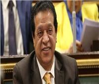 برلماني: توجيهات السيسي بتذليل العقبات في قطاع السياحة «ممتازة»