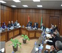 محافظ المنيا يشيد بدور نواب البرلمان في دعم وتطوير القطاع الصحي