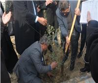 غرس أول شجرة مثمرة في جامعة دمياط